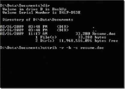 using command prompt to delete blocked files
