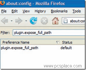 test your firefox plugins